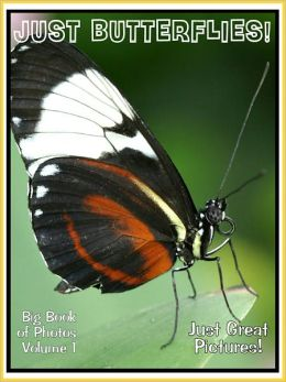 Just Butterfly Photos! Big Book of Photographs & Pictures of Butterflies, Vol. 1
