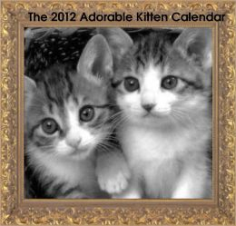 2012 Adorable Kitten Calendar
