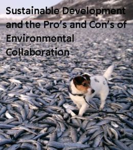 Environmental Politics: Sustainable Development and the Proo
