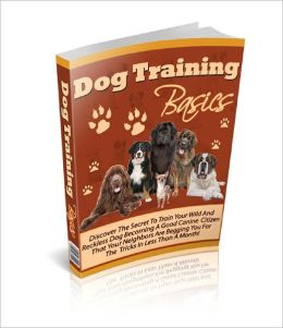 Dog Training Basics Training a dog on how to behave and follow every command