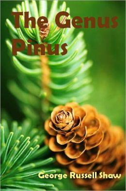The Genus Pinus (Illustrated)