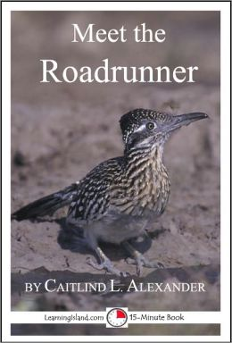 Meet the Roadrunner: A 15-Minute book for Early Readers