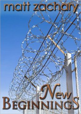 New Beginnings (The New Discoveries Series #4)