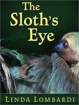 The Sloth's Eye