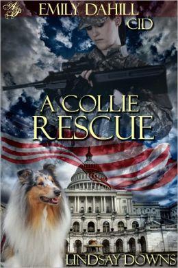 A Collie Rescue
