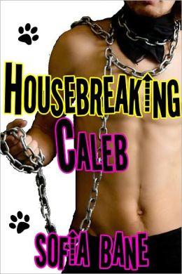 Housebreaking Caleb (M/M Watersports, Puppy Play)