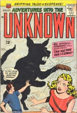 Adventures into the Unknown Number 135 Horror Comic Book