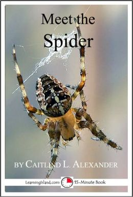 Meet the Spider: A 15-Minute Book for Early Readers