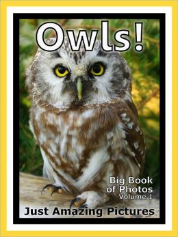 Just Owl Photos! Big Book of Photographs & Pictures of Owls, Vol. 1