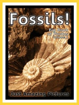 Just Fossil Photos! Big Book of Photographs & Pictures of Fossils, Vol. 1
