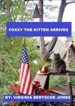 Foxxy the Kitten Arrives