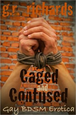 Caged and Contused (Gay BDSM Erotica: Cock Cage, Skater Boys, Group Sex, Webcam)