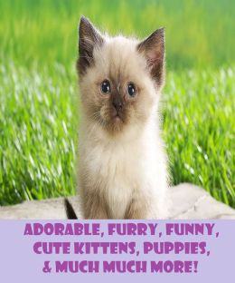 Adorable, Furry, Funny, Cute Kittens, Puppies, & Much Much More Animal Picture Book