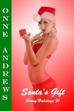 Santa's Gift (Horny Holidays #1 Erotic Fantasy Romance)