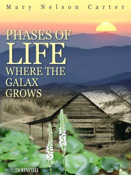 Phases of Life Where the Galax Grows