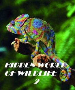 Hidden World of Wildlife 2