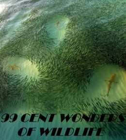 99 cent Wonders of Wildlife