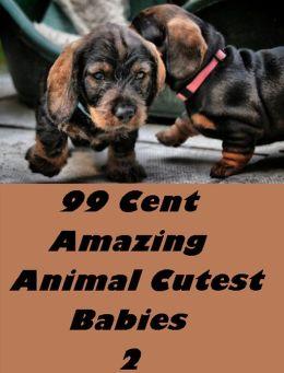 Children's Nonfiction: 99 Cent Amazing Animal Cutest Babies 2