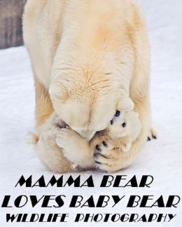 Mamma Bear Loves Baby Bear Wildlife Photography ( spiders , tarantula , sea, creature, sea world, underwater world, horse, wild, forest, beast, animals, elephant, photo, fish, wildlife, ocean, shark, octopus )