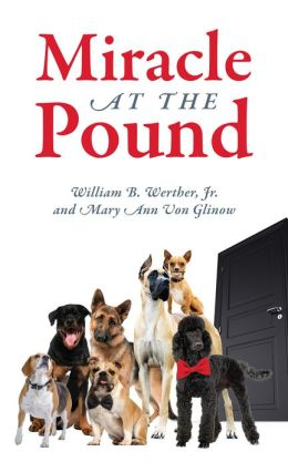 Miracle at the Pound: Teamwork, Leadership, Groups, Dogs, Miracle, Pound, Non-kill pound, Poodle, Great Dane, Mutts, English Sheep Dog