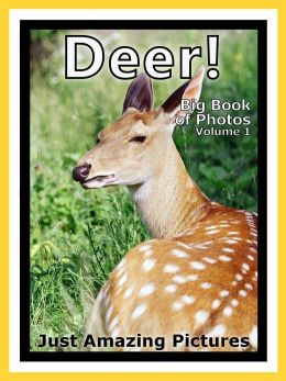 Just Deer, Fawn, and Buck Photos! Big Book of Photographs & Pictures of Deer, Fawns, and Bucks, Vol. 1