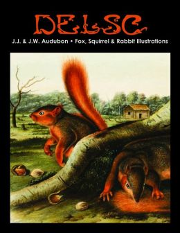 J.J. & J.W. Audubon - Fox, Squirrel & Rabbit Illustrations