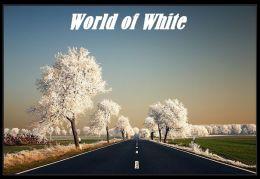 World History: World of White