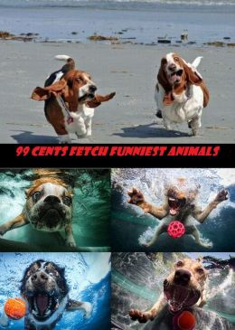99 Cents Fetch Funniest Animals