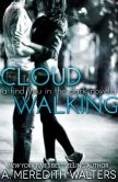 Cloud Walking (A Find You in the Dark novella)