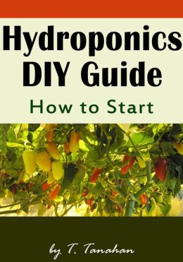 Hydroponics DIY Guide - How to Start