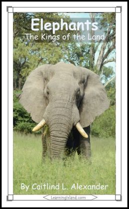 Elephants: The Kings of the Land