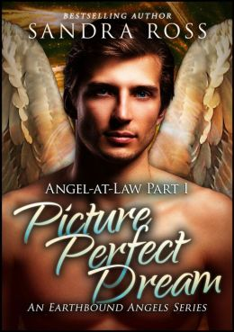 Picture Perfect Dream: Angel-at-Law 1