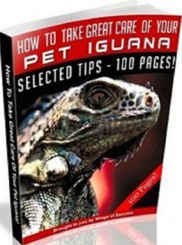 Pet Iguana eBook - How To Take Great Care Of Your Pet Iguana - Reliable Tips And Tactics To Raise Iguanas At Home!