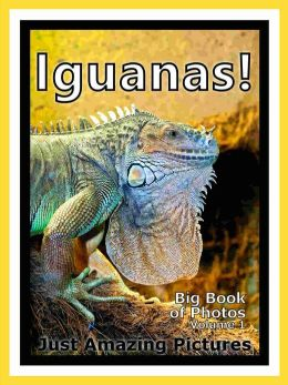 Just Iguana Lizard Photos! Big Book of Photographs & Pictures of Iguana Lizards, Vol. 1