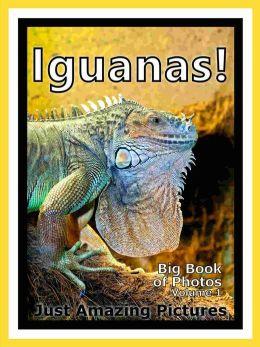 Just Iguana Lizard Photos! Big Book of Photographs & Pictures of Iguana Lizards, Vol. 1