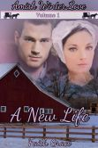 Book Cover Image. Title: Amish Winter Love:  Volume One: A New Life (Christian Romance), Author: Faith Grace