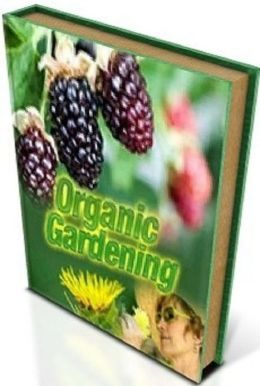 Way To Organic Gardening - Be able to set up your own organic garden and grow your own 100 organic vegetables. ..