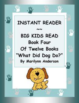 INSTANT READER ~~ Big Kids Read Book Four of Twelve Books: