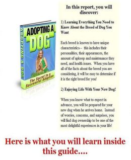Way To Adopting A Dog - Getting to Know Your Dog!
