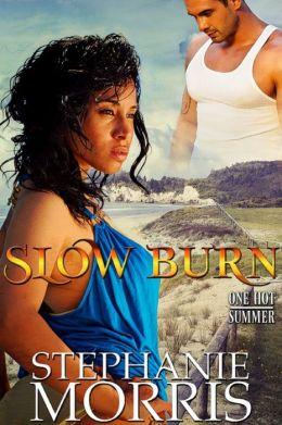 Slow Burn (One Hot Summer, Book 1)
