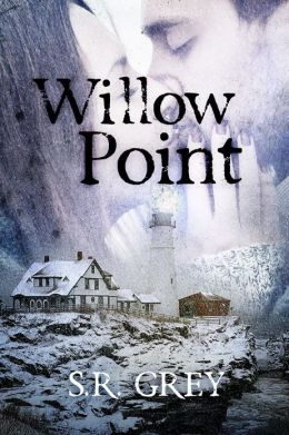 Willow Point: A Harbour Falls Mystery #2