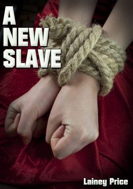 A New Slave (BDSM Romantic Erotica)