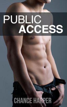 Public Access (A Gay Public Sex Story)