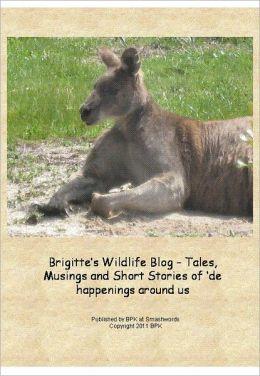 Brigitte's Wildlife Blog - Tales and Stories of 'de happenings around us