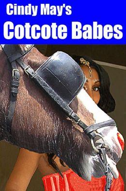 Cotcote Babes