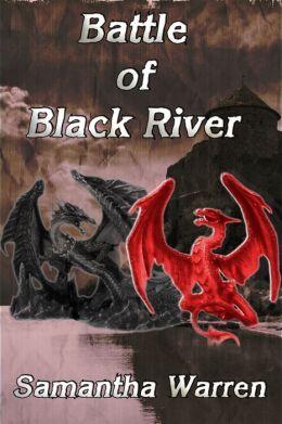 Battle of Black River