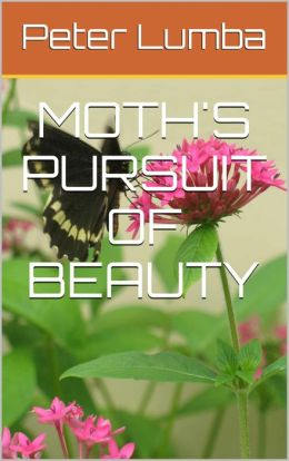Moth's Pursuit of Beauty