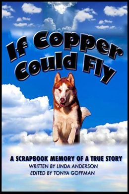 If Copper Could Fly a true story