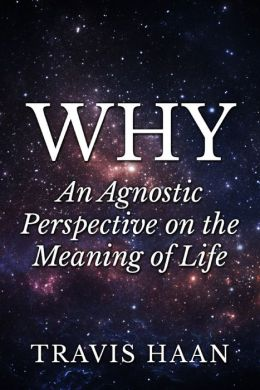Why: An Agnostic Perspective on the Meaning of Life