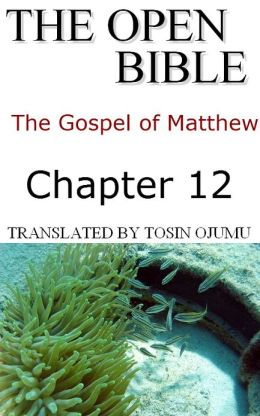 The Open Bible: The Gospel of Matthew: Chapter 12